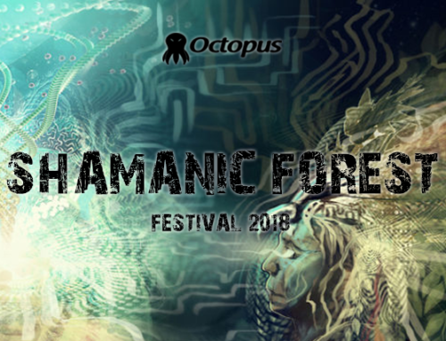 Shamanic Forest ۞ NYE 2019