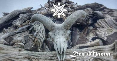 Dea Manna ۞ Eco Retreat