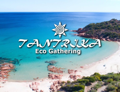 Tantrika: Eco Gathering 2019