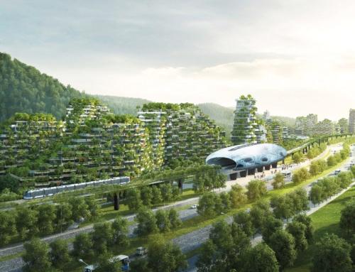 Gli alberi sono una infrastruttura di salute pubblica