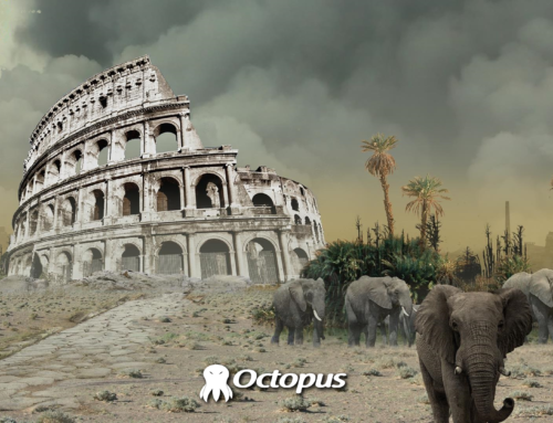 Giornata mondiale della desertificazione, anche l'Italia colpita.