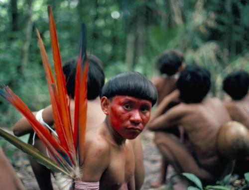 Diecimila cacciatori d'oro stanno distruggendo le terre ancestrali degli yanomami