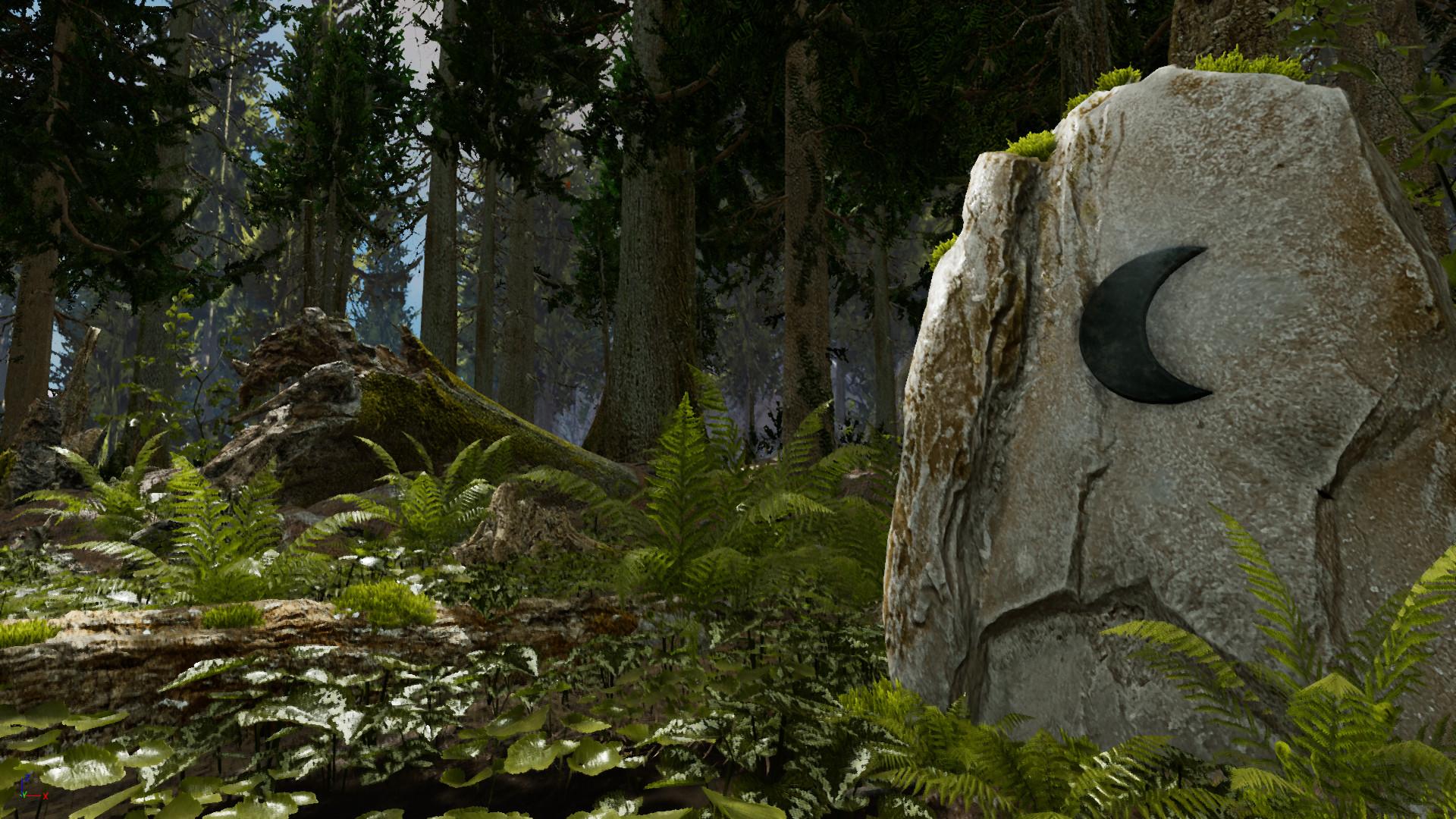"""Shinrin – Yoku """"il bagno nella foresta"""""""